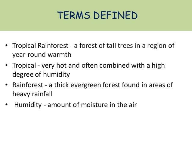 TROPICAL RAINFOREST Slide 3