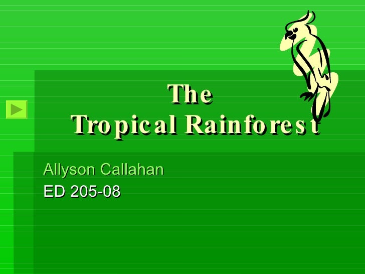 The  Tropical Rainforest Allyson Callahan  ED 205-08