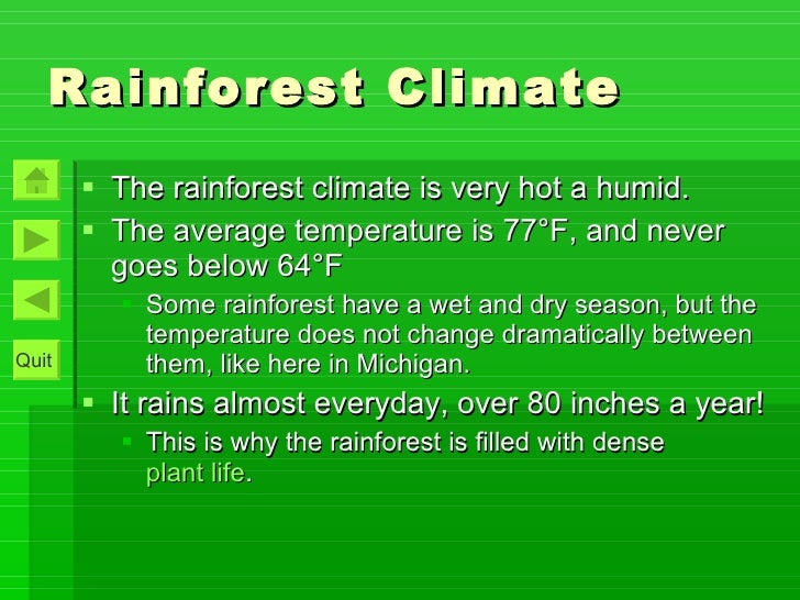 Tropical Rainforest Interactive Pp