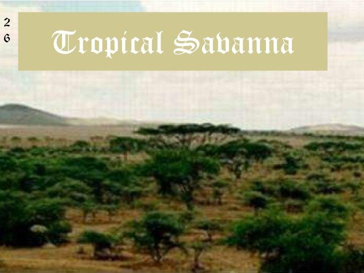 Tropical Savanna<br />2<br />6<br />