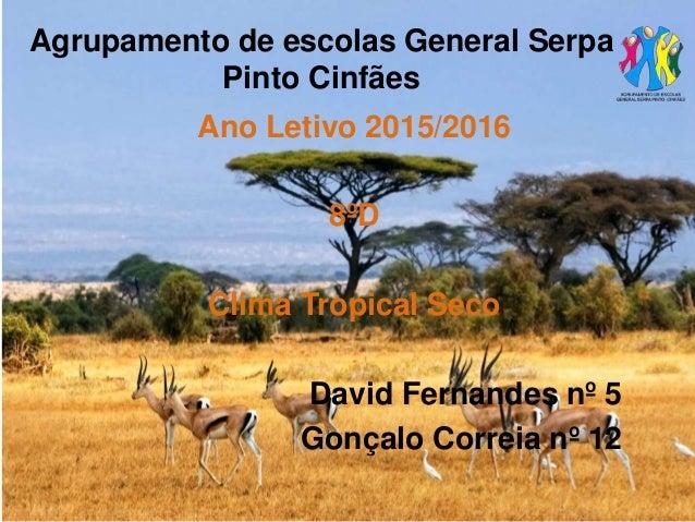 Agrupamento de escolas General Serpa Pinto Cinfães Ano Letivo 2015/2016 8ºD Clima Tropical Seco David Fernandes nº 5 Gonça...