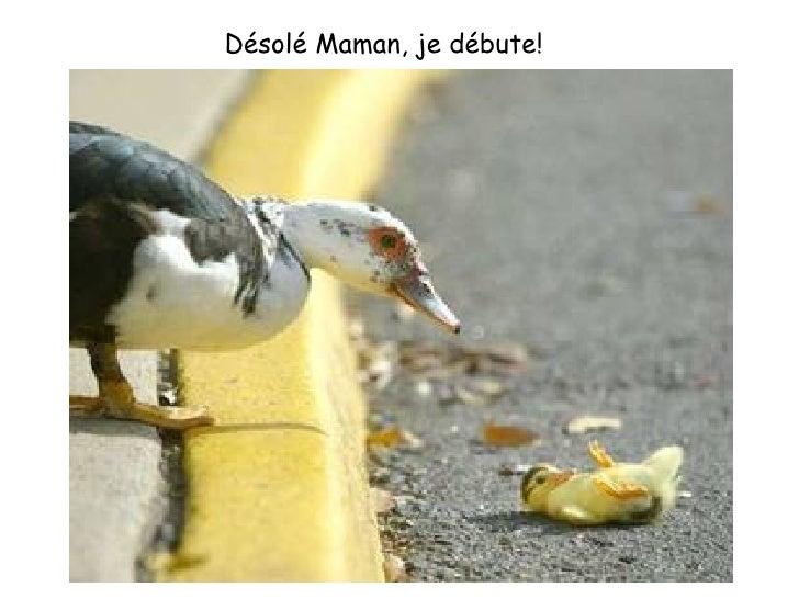 Désolé Maman, je débute!