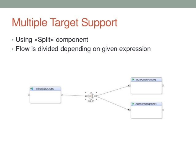 Multiple Target Support • Using «Split» component • Flow is divided depending on given expression