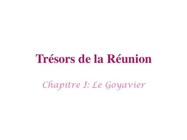 Trésors de la Réunion Chapitre I: Le Goyavier