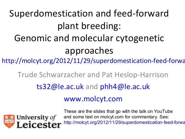 Superdomestication and feed-forward            plant breeding:   Genomic and molecular cytogenetic              approaches...