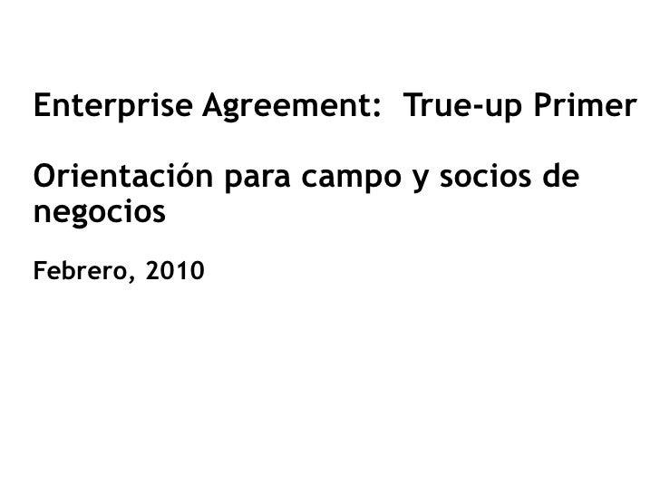 True Up Primer Partner022210espfinal