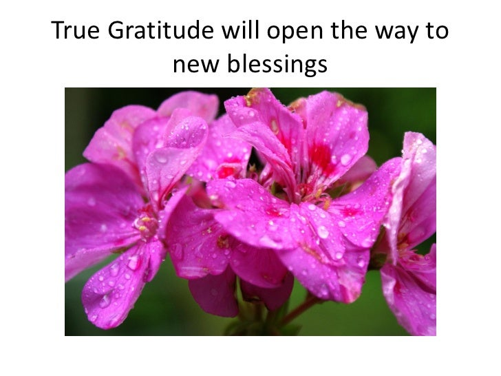 True Gratitude will open the way to           new blessings