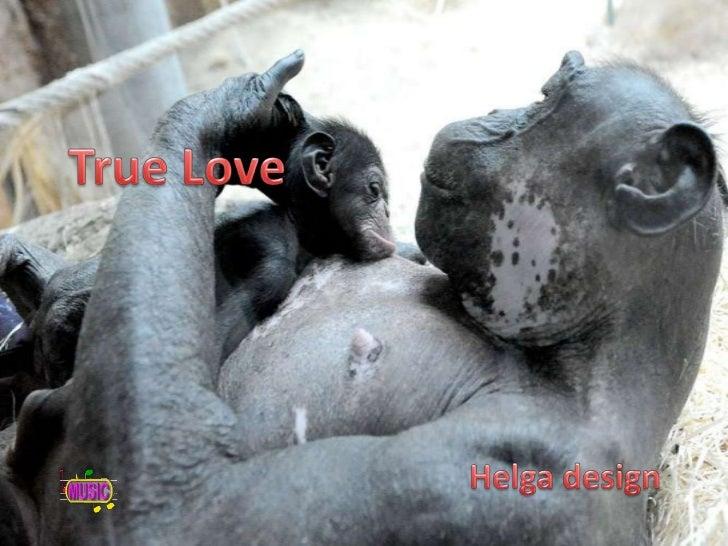 True Love<br />Helga design <br />