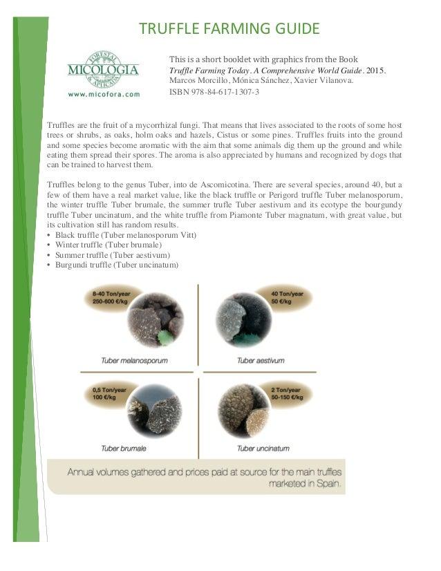 TRUFFLEFARMINGGUIDE  ThisisashortbookletwithgraphicsfromtheBook Truffle Farming T...