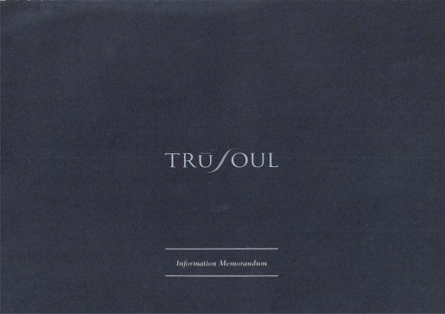 Trusoul information memorandum - Miguel Guedes de Sousa