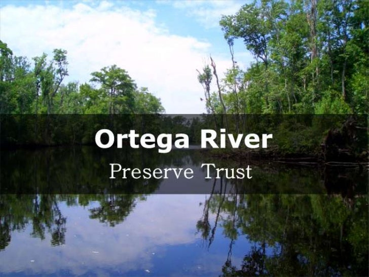 The Ortega River flows into the St. Johns River
