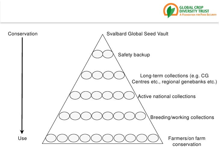 Conservation<br />Svalbard Global Seed Vault<br />Safety backup<br />Long-term collections (e.g. CG Centres etc., regional...