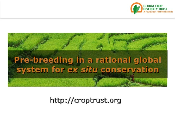 Pre-breeding in a rational globalsystem for ex situ conservation       http://croptrust.org