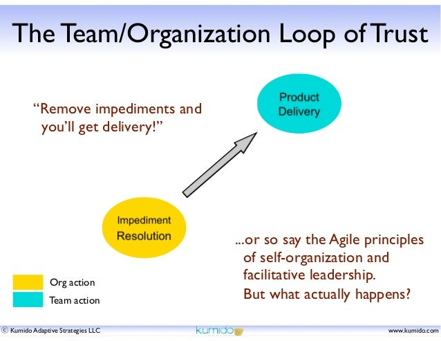 """The Team/Organization Loop of Trust """"Remove impediments and you'll get delivery!""""  Org action Team action ⓒ Kumido Adaptiv..."""