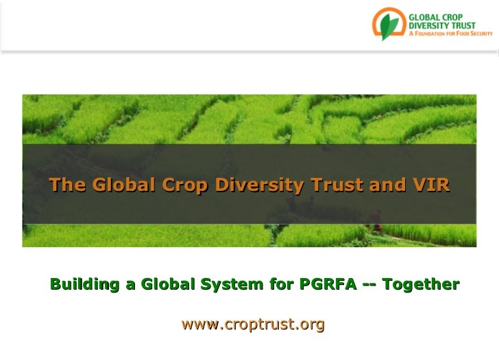 Building a Global System for PGRFA -- Together The Global Crop Diversity Trust and VIR www.croptrust.org