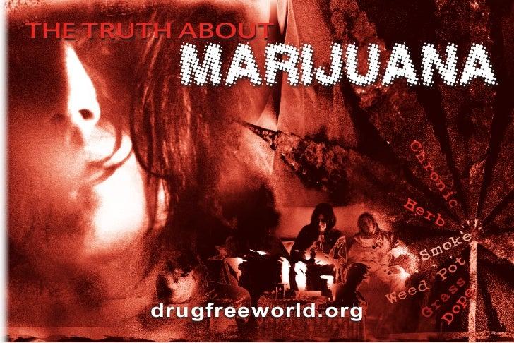 THE TRUTH ABOUT         MARIJUANA                             Ch                               ro                         ...