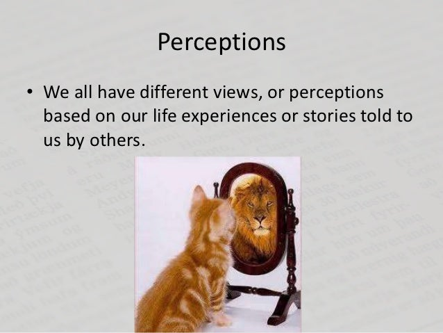 Perceptions• We all have different views, or perceptions  based on our life experiences or stories told to  us by others.