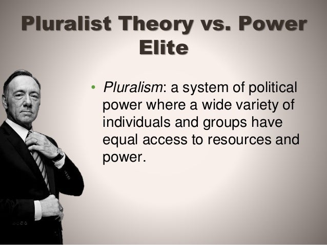 the pluralist perspective