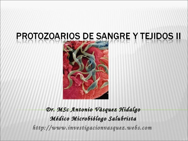 Dr. MSc Antonio Vàsquez Hidalgo Médico Microbiólogo Salubrista http://www.investigacionvasquez.webs.com