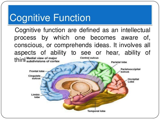 cognitive function the brain Now put your own cognitive skills to work have a go at listing the cognitive function, skills, qualities, tasks, processes you would use to complete each of the tasks below.