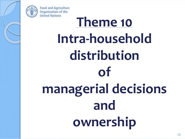 Theme 10 Intra-household distribution of managerial decisions and ownership 15