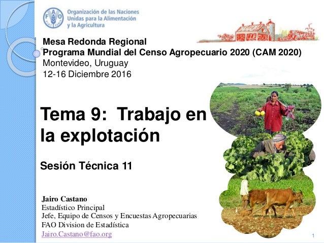 Mesa Redonda Regional Programa Mundial del Censo Agropecuario 2020 (CAM 2020) Montevideo, Uruguay 12-16 Diciembre 2016 Jai...