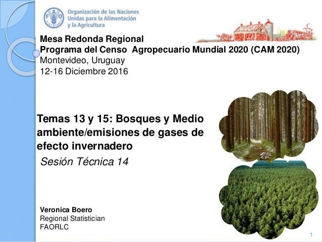 Temas 13 y 15: Bosques y Medio ambiente/emisiones de gases de efecto …