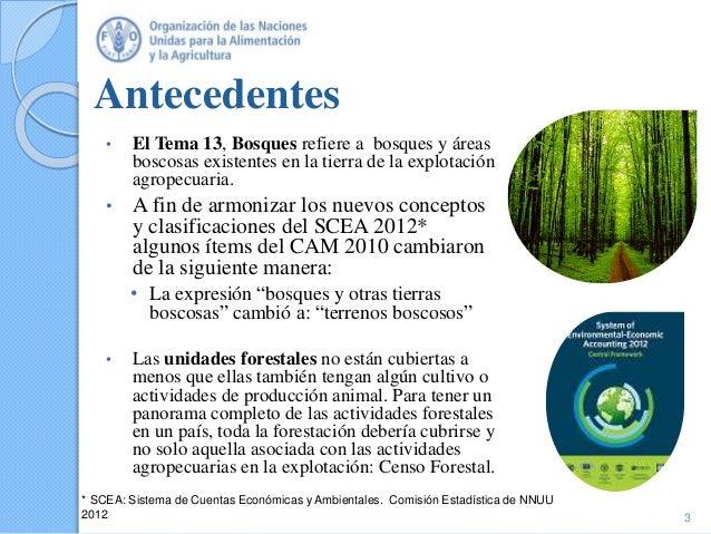 Temas 13 y 15: Bosques y Medio ambiente/emisiones de gases de efecto invernadero Slide 3
