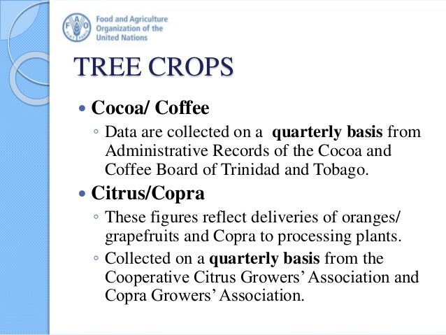 TREE CROPS  Cocoa/ Coffee ◦ Data are collected on a quarterly basis from Administrative Records of the Cocoa and Coffee B...