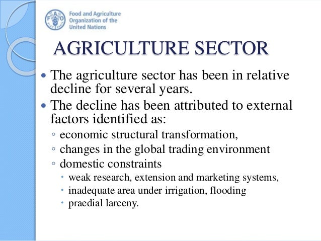 AGRICULTURE SECTOR  The agriculture sector has been in relative decline for several years.  The decline has been attribu...