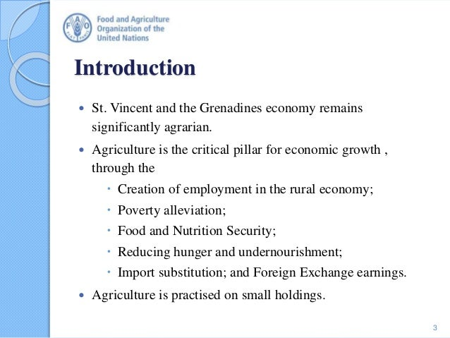 Introduction  St. Vincent and the Grenadines economy remains significantly agrarian.  Agriculture is the critical pillar...