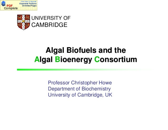 Click Here & Upgrade  PDF Complete  Expanded Features Unlimited Pages  Documents UNIVERSITY OF  CAMBRIDGE  Algal Biofuels ...
