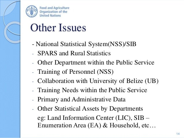 Other Issues - National Statistical System(NSS)/SIB - SPARS and Rural Statistics - Other Department within the Public Serv...
