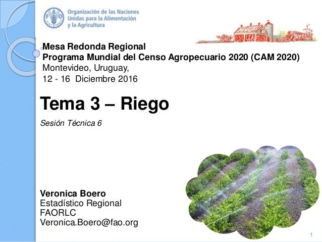 Mesa Redonda Regional Programa Mundial del Censo Agropecuario 2020 (CAM 2020) Montevideo, Uruguay, 12 - 16 Diciembre 2016 ...