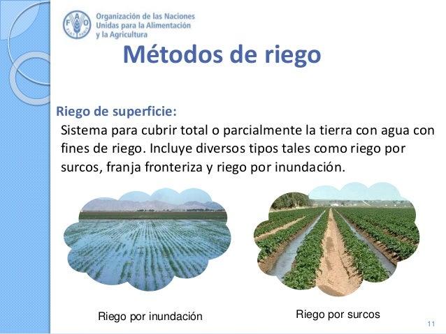 Métodos de riego Riego de superficie: Sistema para cubrir total o parcialmente la tierra con agua con fines de riego. Incl...