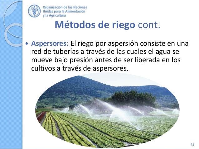 Métodos de riego cont.  Aspersores: El riego por aspersión consiste en una red de tuberías a través de las cuales el agua...