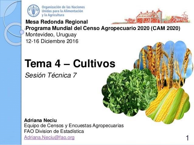 Mesa Redonda Regional Programa Mundial del Censo Agropecuario 2020 (CAM 2020) Montevideo, Uruguay 12-16 Diciembre 2016 Tem...