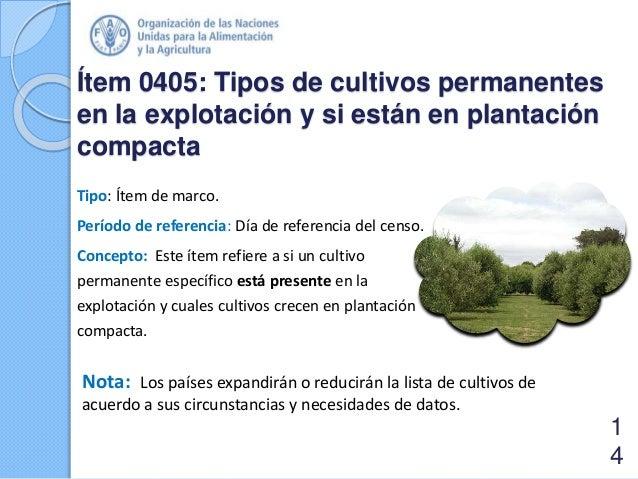 Ítem 0405: Tipos de cultivos permanentes en la explotación y si están en plantación compacta Tipo: Ítem de marco. Período ...