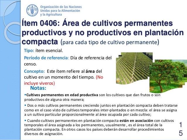 Ítem 0406: Área de cultivos permanentes productivos y no productivos en plantación compacta (para cada tipo de cultivo per...