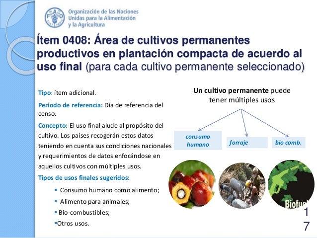 Ítem 0408: Área de cultivos permanentes productivos en plantación compacta de acuerdo al uso final (para cada cultivo perm...
