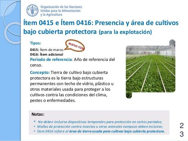 Ítem 0415 e Ítem 0416: Presencia y área de cultivos bajo cubierta protectora (para la explotación) Tipos: 0415: Ítem de ma...