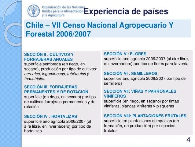 Experiencia de países Chile – VII Censo Nacional Agropecuario Y Forestal 2006/2007 SECCIÓN II : CULTIVOS Y FORRAJERAS ANUA...