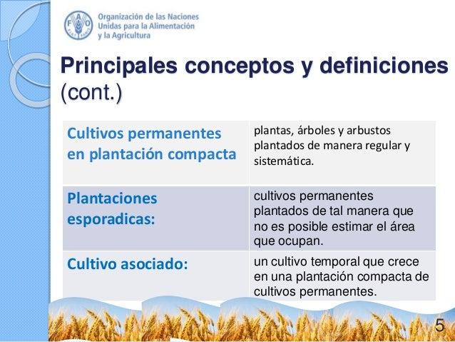 Principales conceptos y definiciones (cont.) Cultivos permanentes en plantación compacta plantas, árboles y arbustos plant...