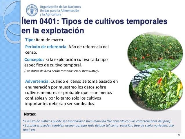 Ítem 0401: Tipos de cultivos temporales en la explotación Tipo: ítem de marco. Período de referencia: Año de referencia de...