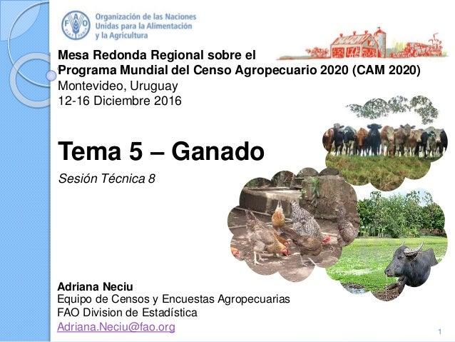 Mesa Redonda Regional sobre el Programa Mundial del Censo Agropecuario 2020 (CAM 2020) Montevideo, Uruguay 12-16 Diciembre...