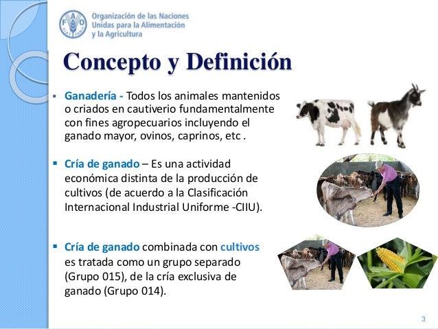 Concepto y Definición  Ganadería - Todos los animales mantenidos o criados en cautiverio fundamentalmente con fines agrop...