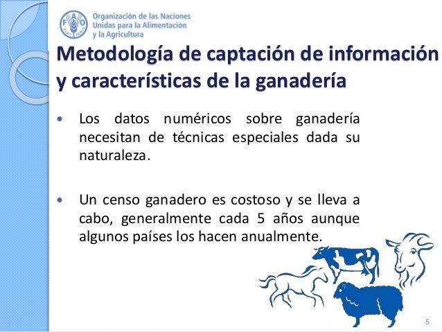 Metodología de captación de información y características de la ganadería  Los datos numéricos sobre ganadería necesitan ...