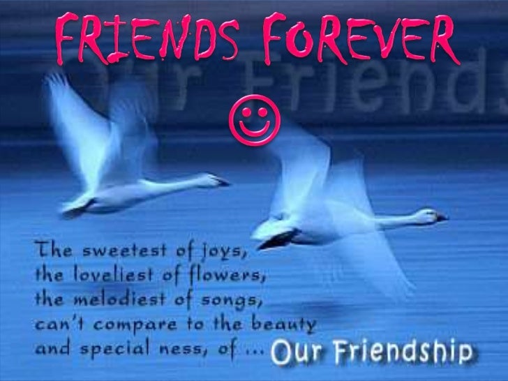 FRIENDS FOREVER<br /><br />