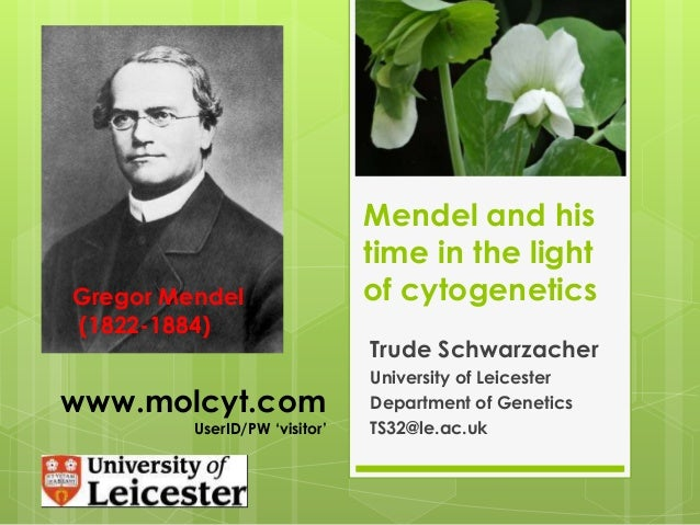 Mendel and his time in the light of cytogenetics Trude Schwarzacher University of Leicester Department of Genetics TS32@le...