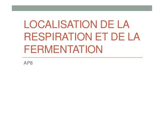 LOCALISATION DE LA RESPIRATION ET DE LA FERMENTATION AP8
